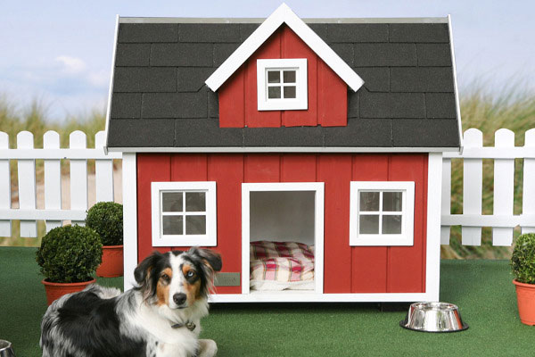 cuchasluxury-house-designs-for-your-dog7