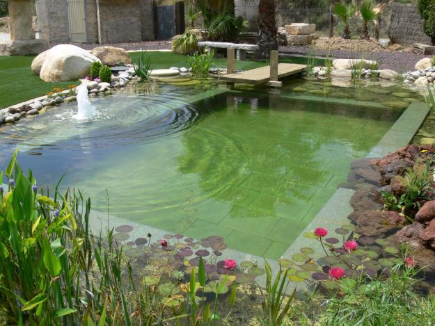 Cómo instalar una biopiscina o piscina ecológica