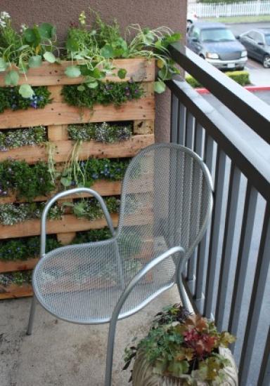 Cómo instalar un jardín vertical en el balcón aportando verde