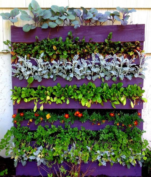 C mo instalar un jard n vertical en el balc n aportando verde Jardines verticales para patios pequenos