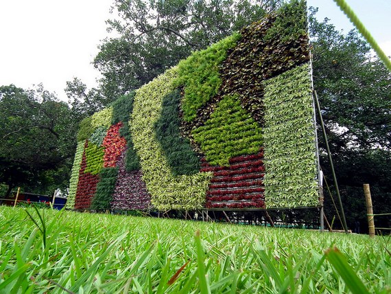 C mo instalar un jard n vertical de sustrato en casa for Vegetacion ornamental