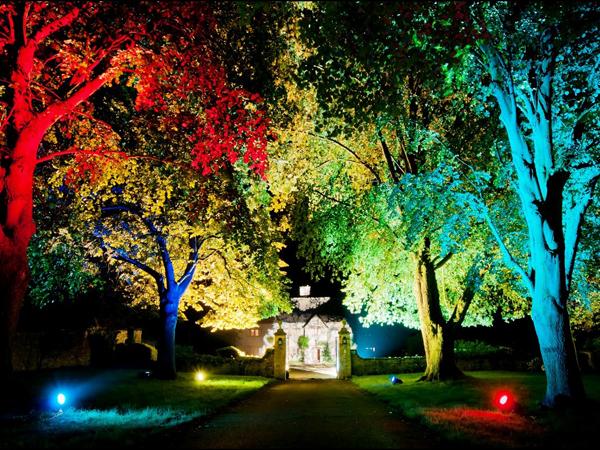 Consejos de como iluminar su jard n con gusto for Iluminacion arboles jardin