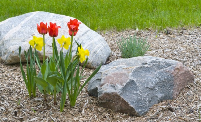 Consejos para instalar piedras en el jard n for Jardines arreglados con piedras