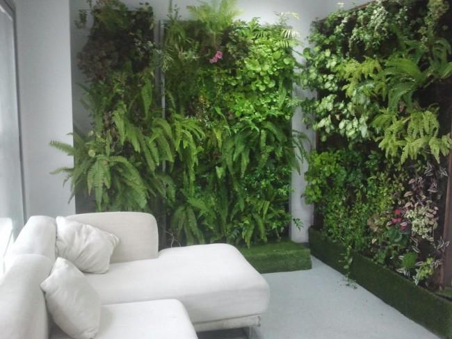 Consejos para instalar un jard n vertical for Paredes verticales de plantas