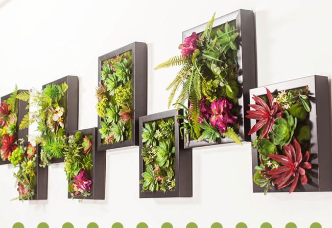 Paredes para pintar macetas y flores casa dise o - Marcos para plantas ...