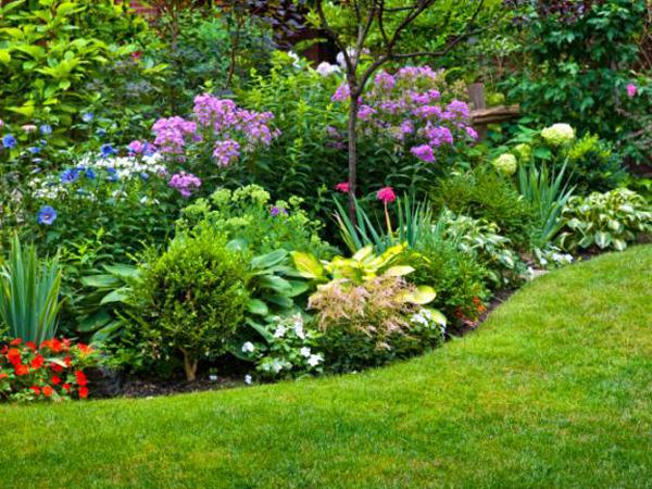¿Qué tipos de flores instalar en tu jardín?