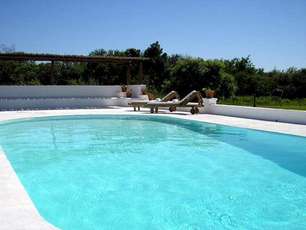Como limpiar una piscina stunning cmo limpiar las for Como limpiar fondo piscina