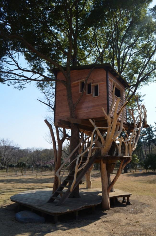 Casa-arboles-03