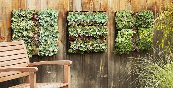 C mo instalar un jard n vertical peque o en la terraza for Como adornar un jardin con plantas