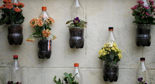 jardin-vertical-2