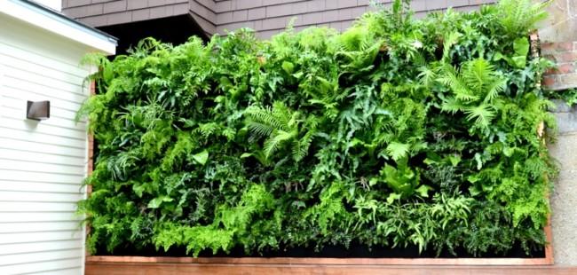 C mo instalar un jard n vertical peque o en la terraza for Jardin vertical pequeno