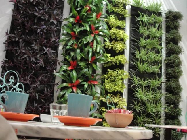 C mo instalar un jard n vertical peque o en la terraza - Plantas para jardines verticales ...