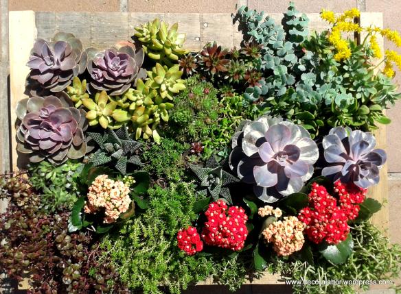 jardin vertical renovado