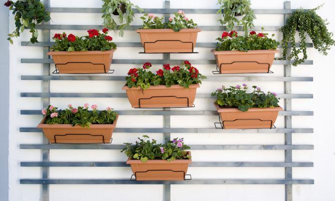 jardinbrico-0645-jardin-vertical-xl-668x400x80xX