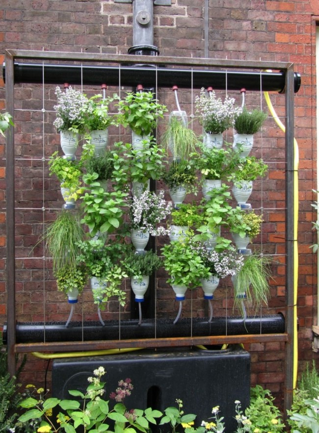 jardincomo-diseñar-un-jardin-ideas-diy