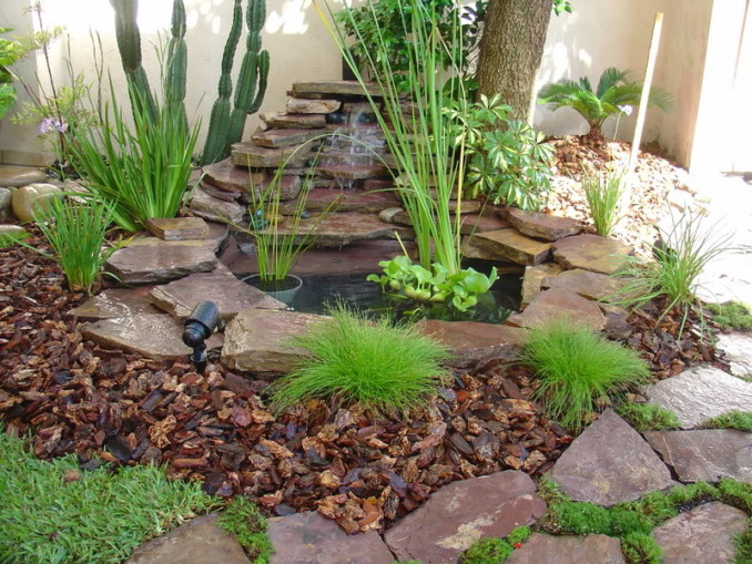 zfengplantas-y-agua-en-jardin-feng-shui