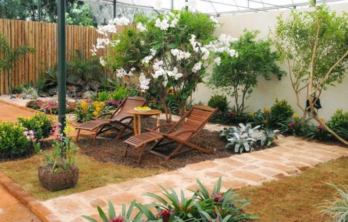 jardn pequeo con plantas trepadoras
