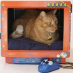 Reciclar monitor de PC viejo en una cucha para perro o gato