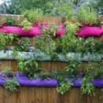 Cómo instalar una huerta vertical pequeña en el balcón o terraza