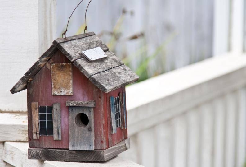 C mo instalar una bonita casa para p jaros - Casitas para pajaros jardin ...