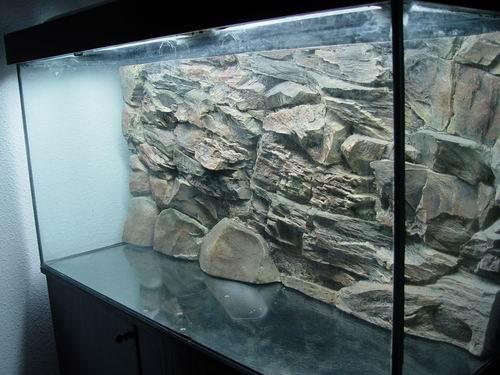 acuario300_4