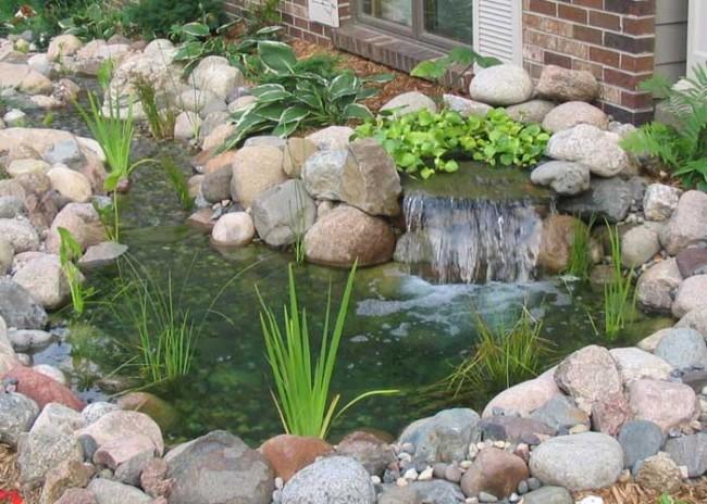 zestanque-jardin