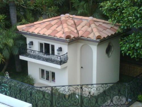 cuchaaseta-perros-paris-hilton-500x375