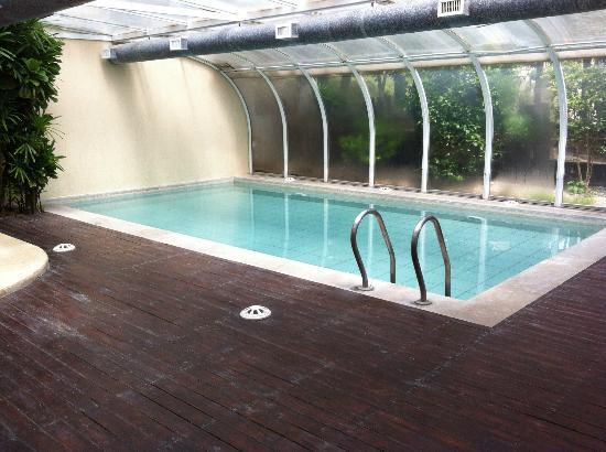 D nde pongo la piscina consejos para instalar una pileta for Hacer una piscina en casa