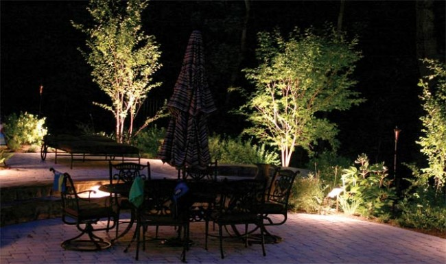 limuniacion-jardin