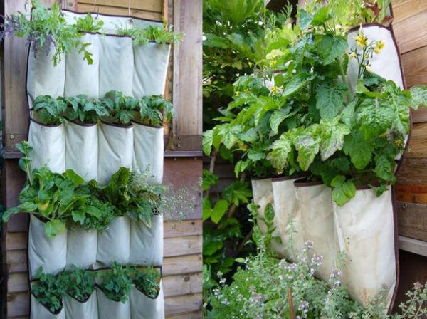 zzzzzzzzzzzshoe-pockets-diy-vertical-garden
