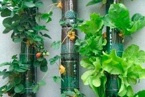 C mo instalar un jard n vertical peque o en la terraza - Jardin hidroponico ...