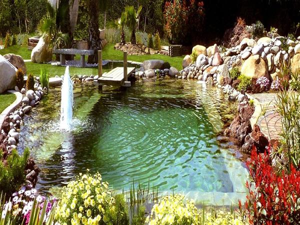 Como instalar un criadero de ranas en un estanque de su casa for Impermeabilizacion de estanques para peces