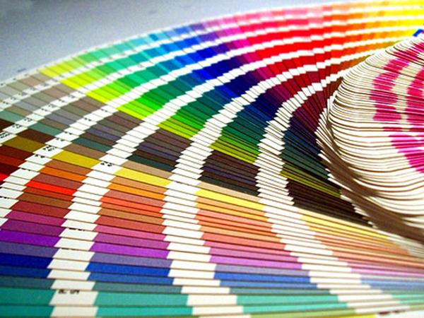 Cuales Son Los Mejores Colores Para Pintar Una Habitación En