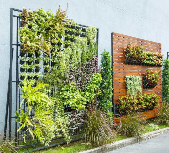 C mo instalar un jard n vertical peque o en la terraza for Materiales para un muro verde