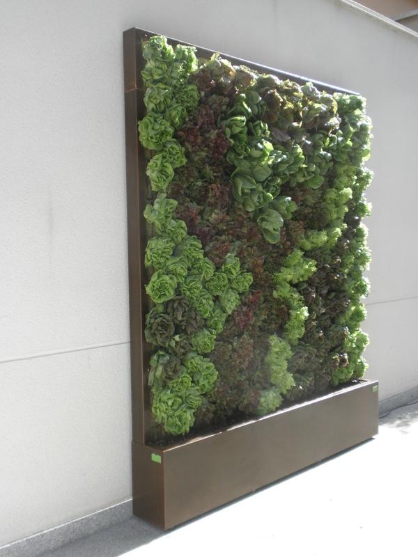 Dise o y decoraci n de jardines peque os y modernos 90 - Como hacer un jardin vertical de interior ...
