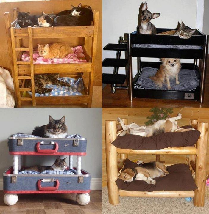 C mo hacer una cucha para perros o gatos con materiales - Casa de gatos con palets ...