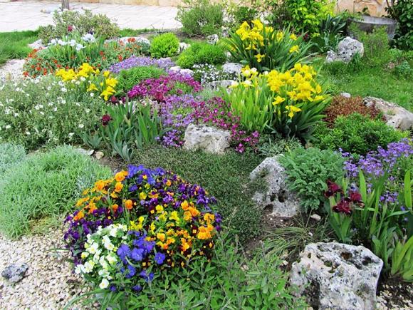 Tipos de jardines stunning with tipos de jardines for Tipos de plantas para jardin