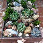Como hacer rocallas pequeñas o jardines con piedras chicos