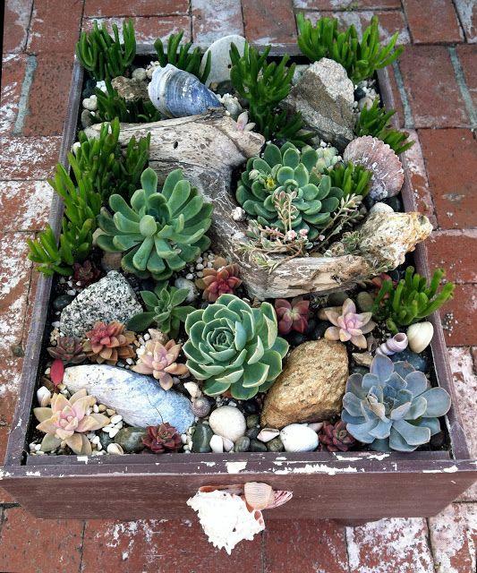 Como hacer rocallas peque as o jardines con piedras chicos for Como hacer un jardin con piedras