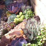 Decoración de jardines con rocallas grandes y pequeñas