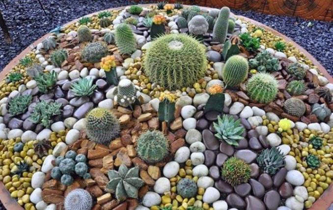 C mo hacer jardines peque os con piedras de colores o for Jardines adornados con piedras