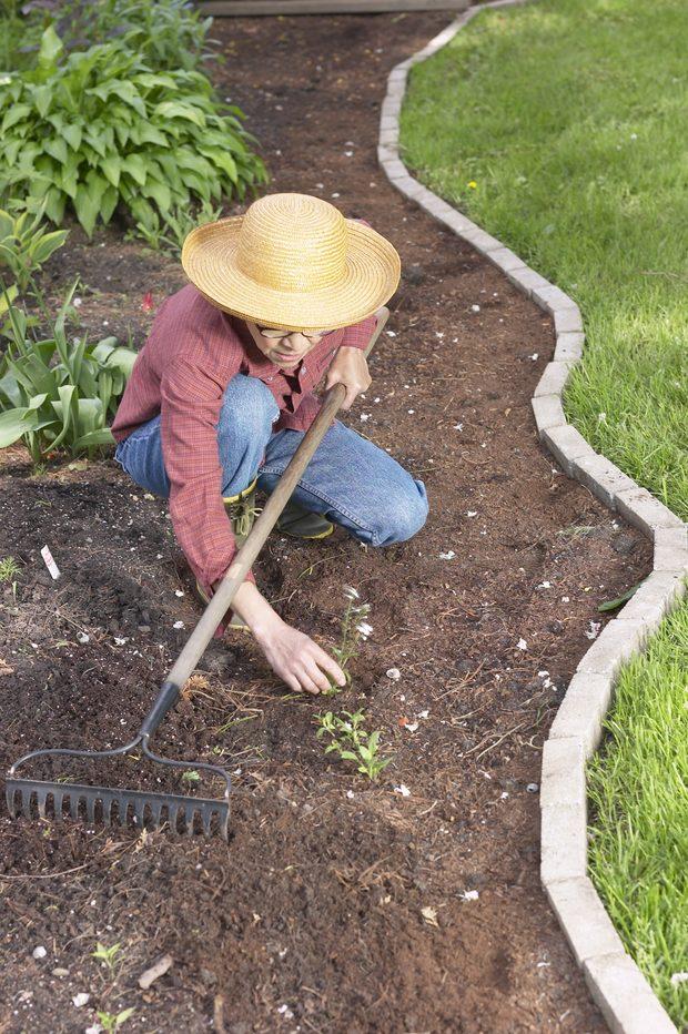 C mo hacer un camino de hormig n en el jardin for Como colocar adoquines en el jardin